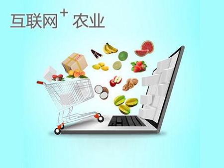 农产品小程序开发:农产品小程序开发的优势和功能